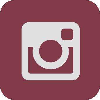 icona instagra